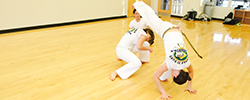 Group and Instructional Fitness Classes